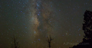 Dixie National Forest Milky Way