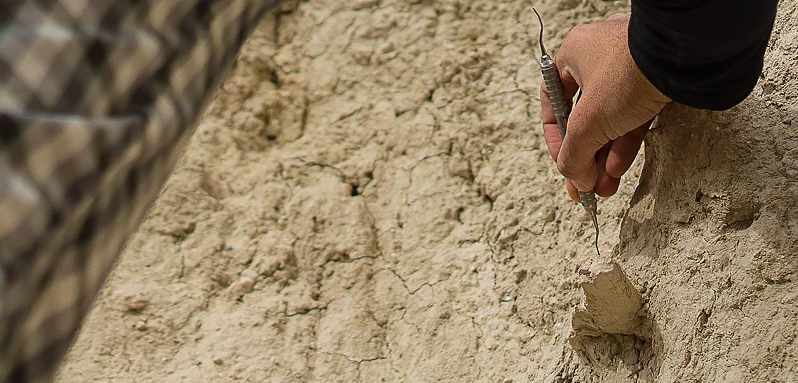 Tule Springs Fossil Dig