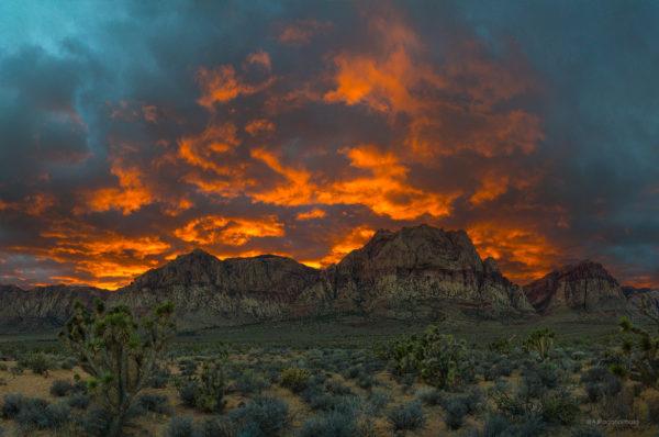 Red Rock Canyon Large Photo Print near Las Vegas
